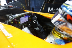 Yas Marina Circuit, Abu Dhabi, United Arab Emirates.Sunday 26 November 2017.Fernando Alonso, McLaren, in his cockpit.Photo: Steven Tee/McLarenref: Digital Image _R3I4633