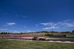 Hungaroring, Budapest, Hungary. .Sunday 30 July 2017.Fernando Alonso, McLaren MCL32 Honda. Photo: Zak Mauger/McLarenref: Digital Image _56I5311