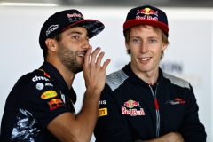 SAO PAULO, BRAZIL - NOVEMBER 12: Daniel Ricciardo of Australia and Red Bull Racing talks with Brendon Hartley of New Zealand and Scuderia Toro Rosso on the drivers parade before the Formula One Grand Prix of Brazil at Autodromo Jose Carlos Pace on November 12, 2017 in Sao Paulo, Brazil. (Photo by Mark Thompson/Getty Images) // Getty Images / Red Bull Content Pool // P-20171112-01134 // Usage for editorial use only // Please go to www.redbullcontentpool.com for further information. //